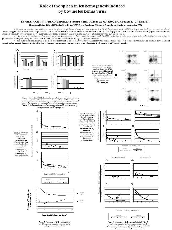 Florins A. *1, Gillet N. 1, Jean G. 1, Thewis A. 1, Schwartz-Cornil I. 2, Bonneau M. 2, Hay J.B. 3, Kettmann R. *1, Willems L *1. 1 Molecular and Cell