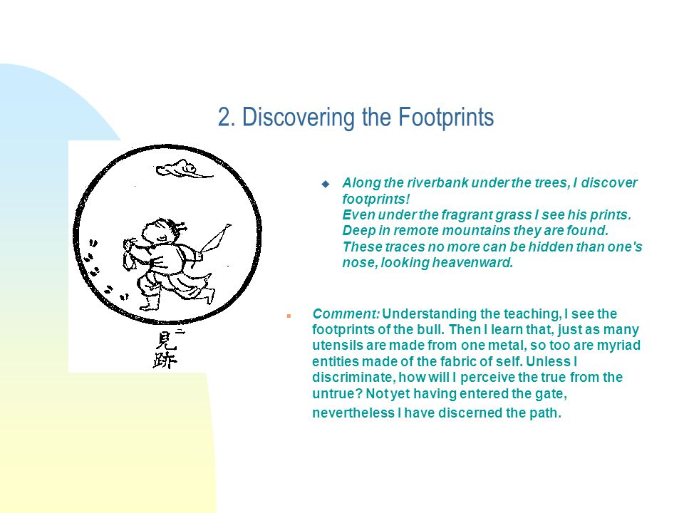 2. Discovering the Footprints u Along the riverbank under the trees, I discover footprints.