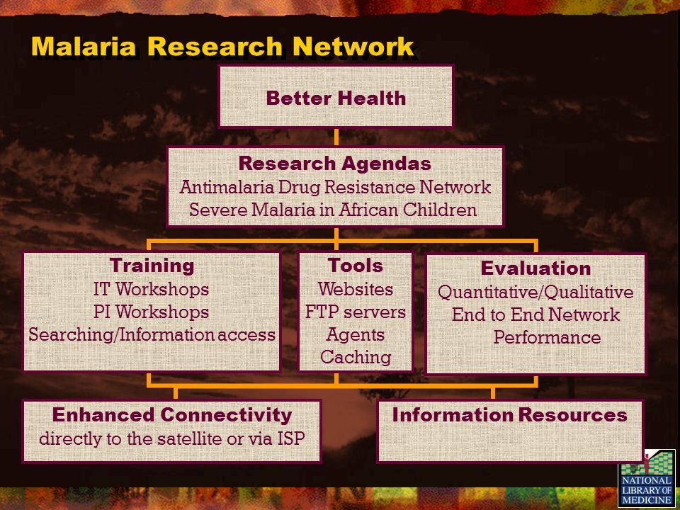 Malaria Research Network Enhanced Connectivity directly to the satellite or via ISP Information Resources Training IT Workshops PI Workshops Searching