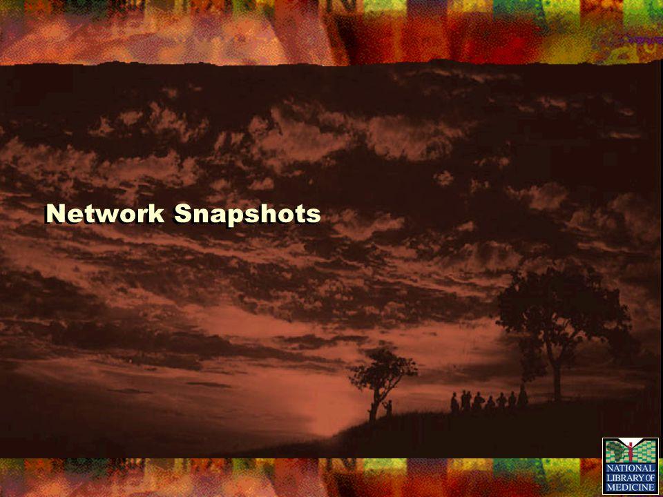 Network Snapshots