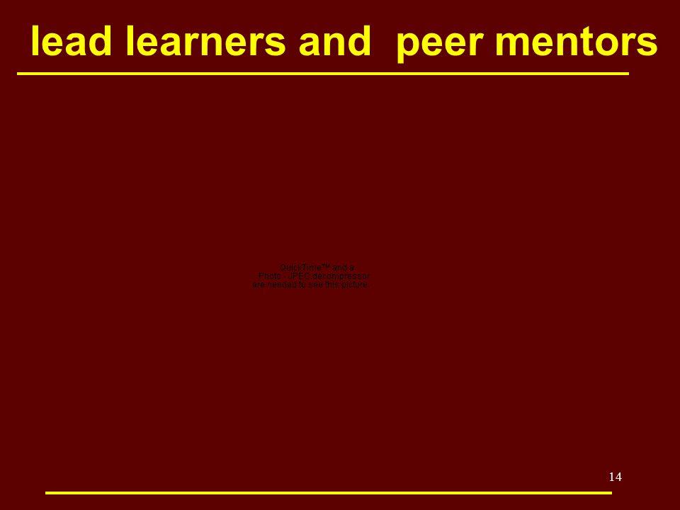 14 lead learners and peer mentors