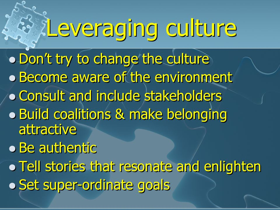 Leveraging culture Don't try to change the culture Become aware of the environment Consult and include stakeholders Build coalitions & make belonging