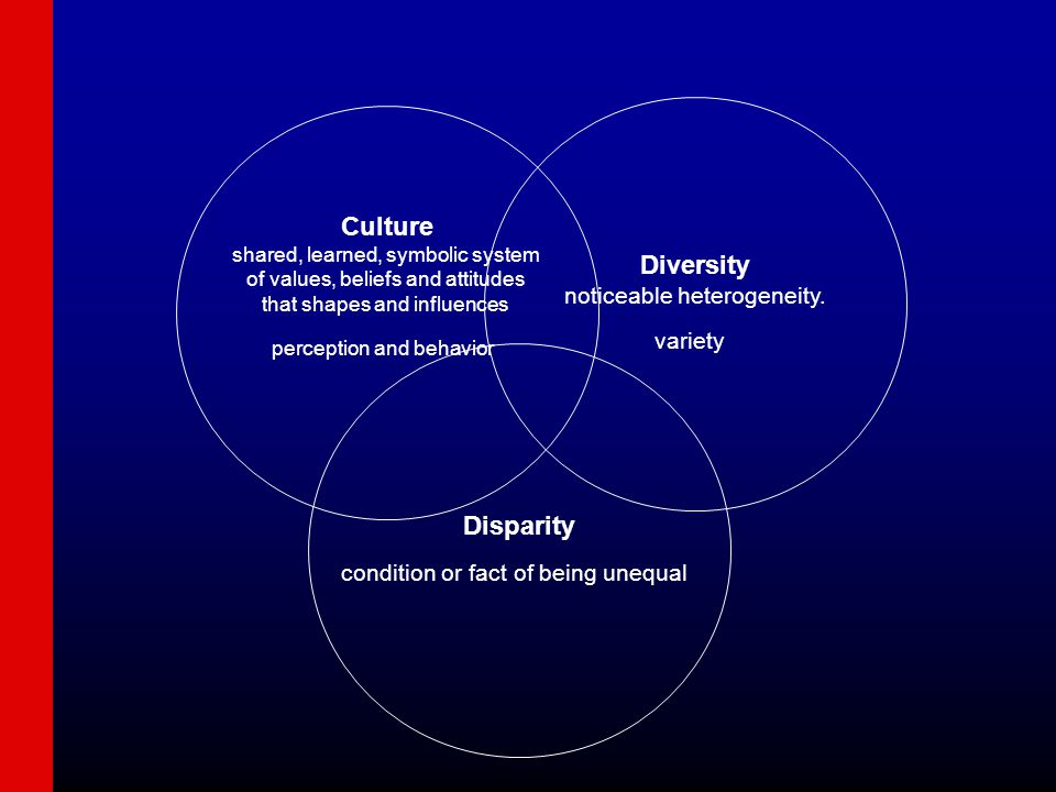 Disparity condition or fact of being unequal Diversity noticeable heterogeneity.