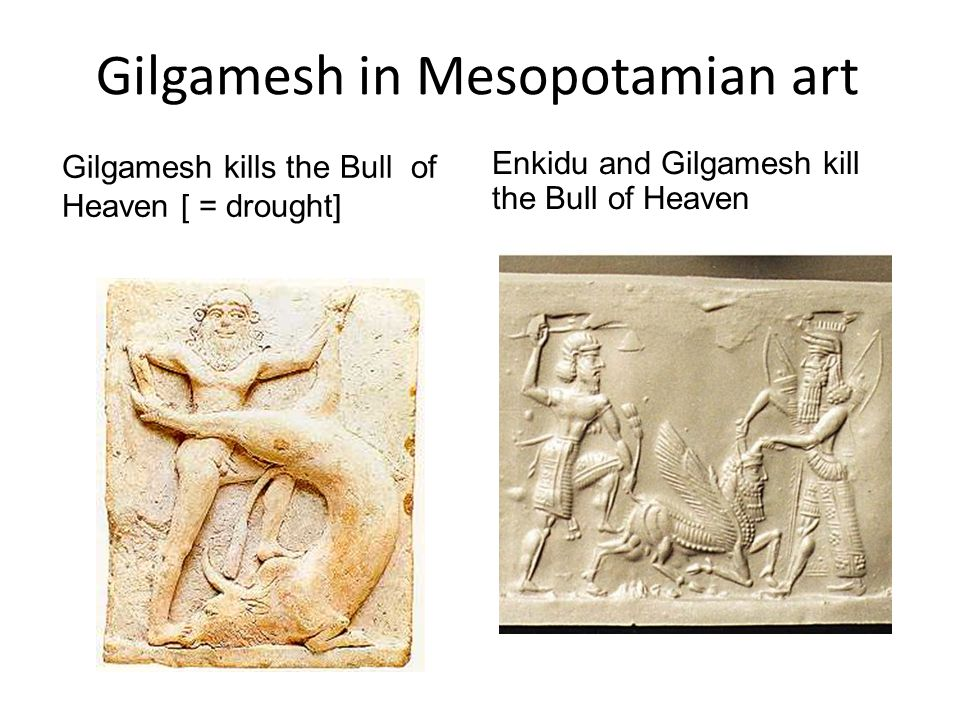Gilgamesh in Mesopotamian art Gilgamesh kills the Bull of Heaven [ = drought] Enkidu and Gilgamesh kill the Bull of Heaven