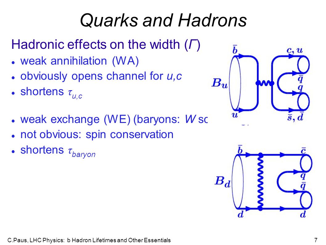 C.Paus, LHC Physics: b Hadron Lifetimes and Other Essentials7 Quarks and Hadrons Hadronic effects on the width (Γ)‏ ● weak annihilation (WA)‏ ● obviously opens channel for u,c ● shortens τ u,c ● weak exchange (WE) (baryons: W scattering)‏ ● not obvious: spin conservation ● shortens τ baryon