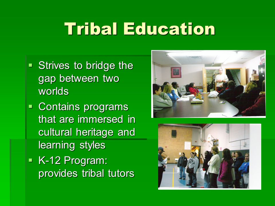Tribal Education  Strives to bridge the gap between two worlds  Contains programs that are immersed in cultural heritage and learning styles  K-12 Program: provides tribal tutors
