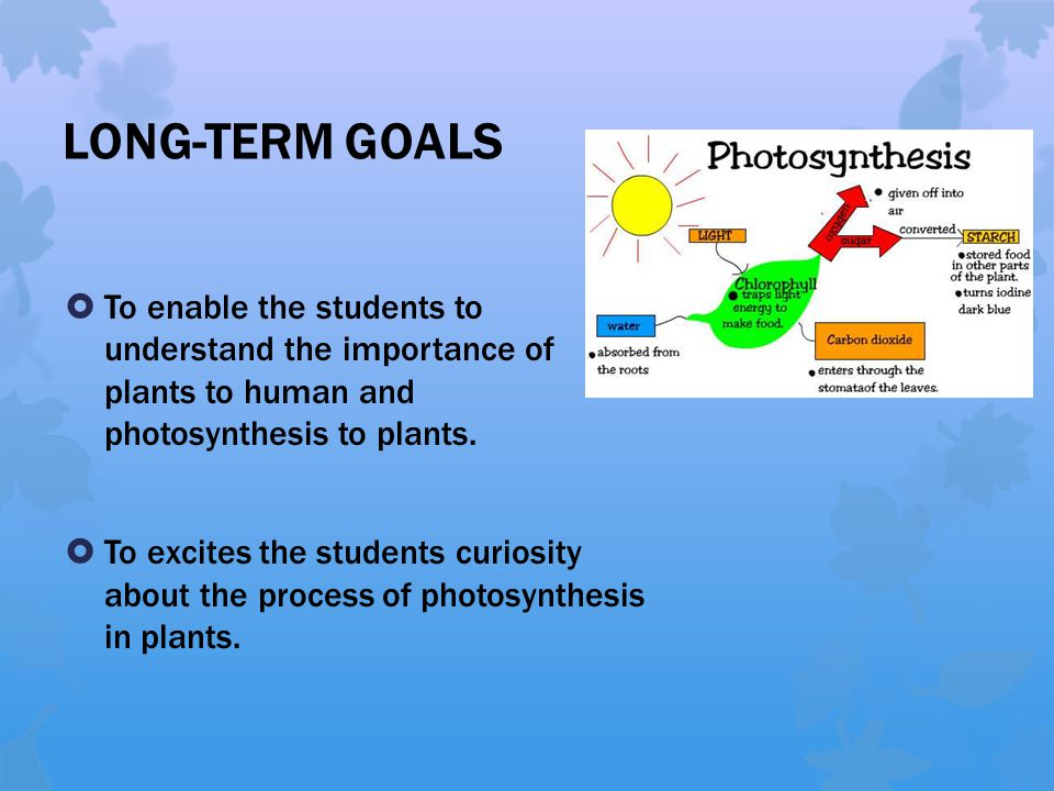 LONG-TERM GOALS  To enable the students to understand the importance of plants to human and photosynthesis to plants.  To excites the students curio