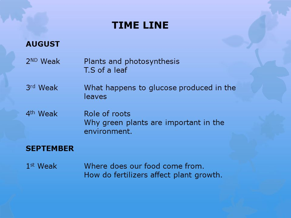 TIME LINE AUGUST 2 ND WeakPlants and photosynthesis T.S of a leaf 3 rd WeakWhat happens to glucose produced in the leaves 4 th WeakRole of roots Why green plants are important in the environment.