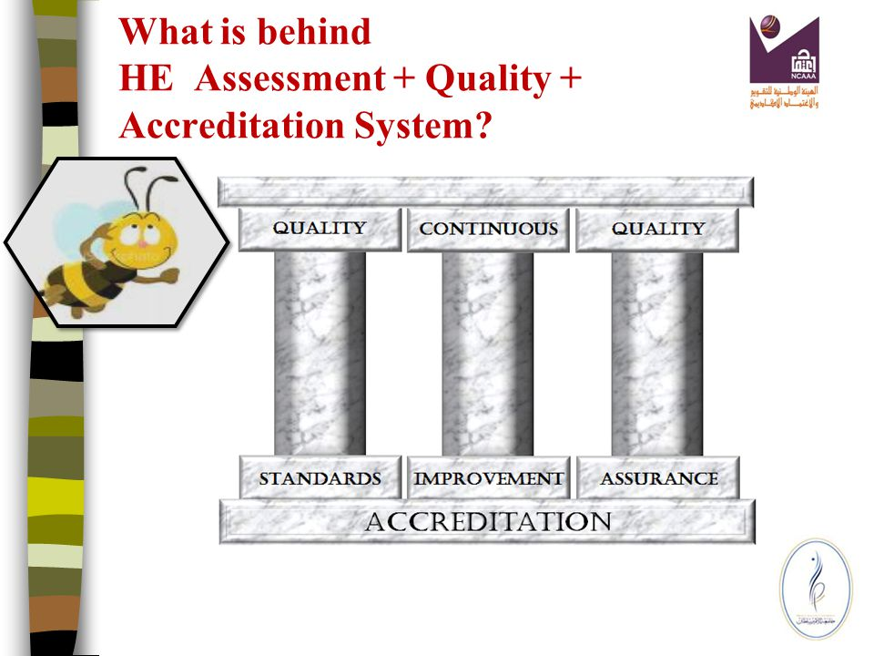 Criteria for Quality Assurance and Accreditation in HE in SA Supporting materials such (such as handbooks detailing quality assurance processes, BQF, Institution + Program Standards, and self- evaluation scales, templates for programme plans and reports, Key Performance Indicators, and student surveys).