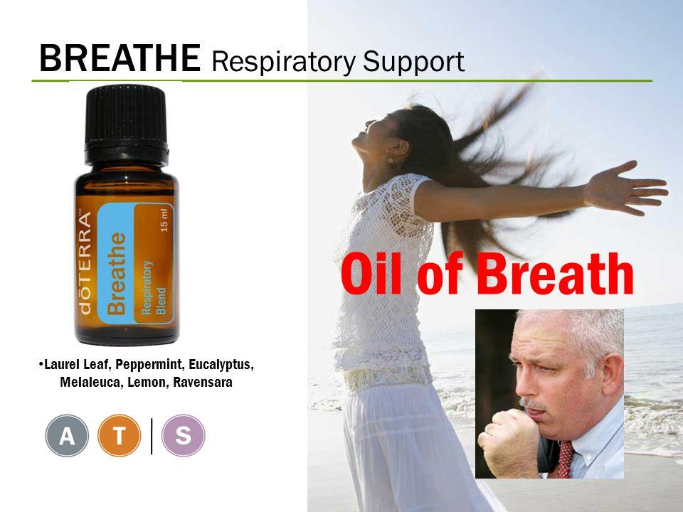 BREATHE Respiratory Support Laurel Leaf, Peppermint, Eucalyptus, Melaleuca, Lemon, Ravensara Oil of Breath