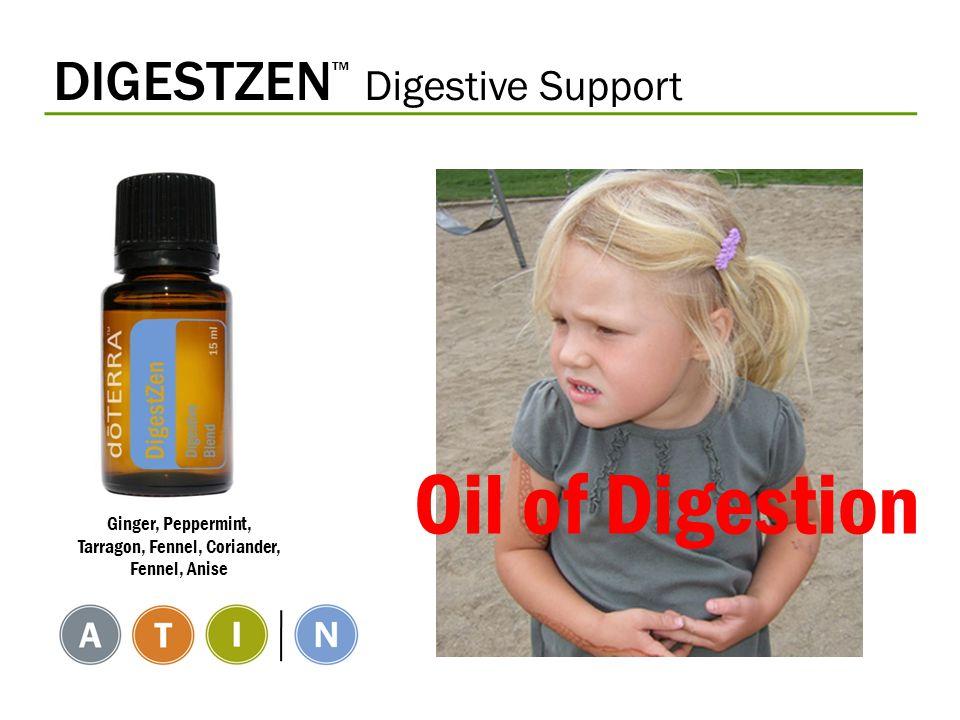 DIGESTZEN ™ Digestive Support Ginger, Peppermint, Tarragon, Fennel, Coriander, Fennel, Anise Oil of Digestion