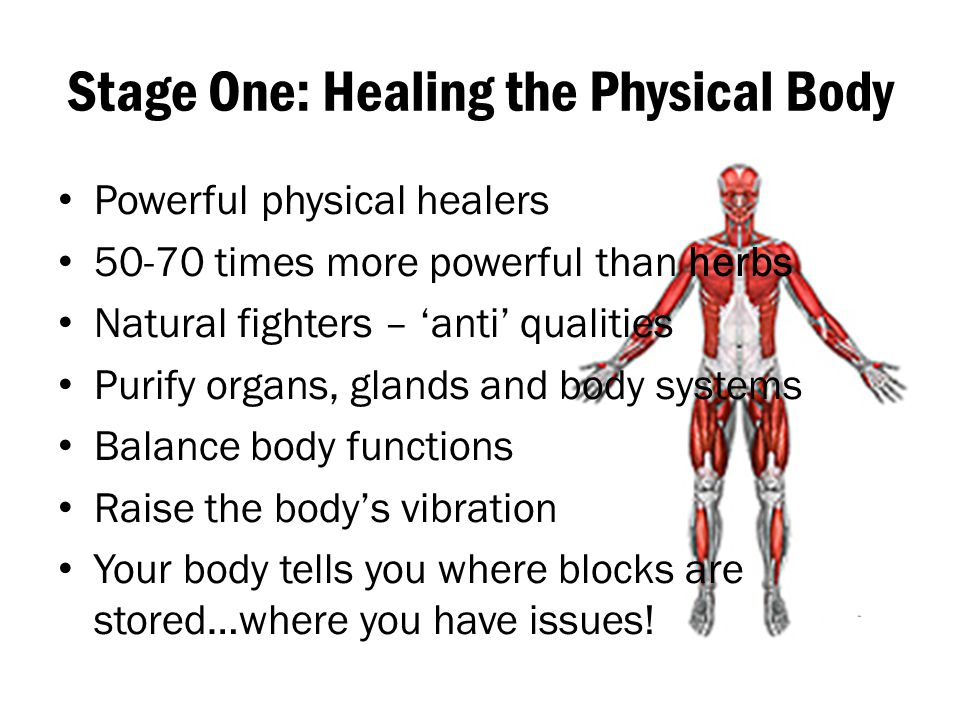 Stage One: Healing the Physical Body Powerful physical healers 50-70 times more powerful than herbs Natural fighters – 'anti' qualities Purify organs,