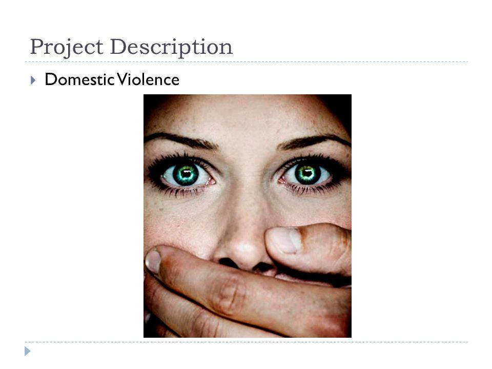 Project Description  Domestic Violence