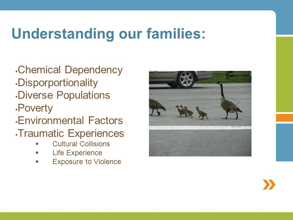Understanding our families:  Chemical Dependency  Disporportionality  Diverse Populations  Poverty  Environmental Factors  Traumatic Experiences  Cultural Collisions  Life Experience  Exposure to Violence