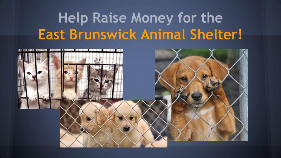 Help Raise Money for the East Brunswick Animal Shelter!