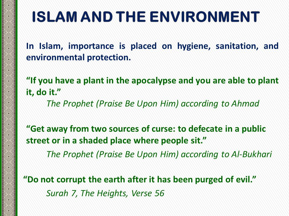 In Islam, importance is placed on hygiene, sanitation, and environmental protection.