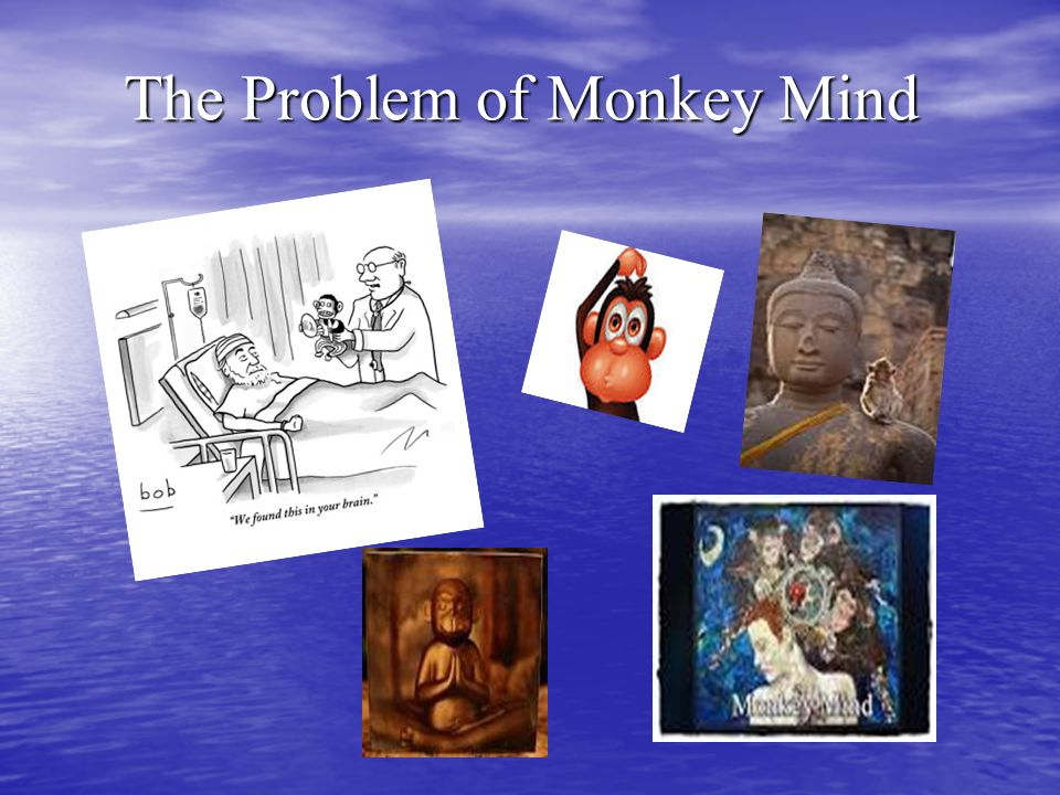 The Problem of Monkey Mind