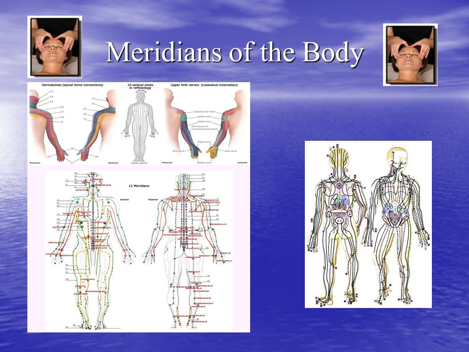 Meridians of the Body