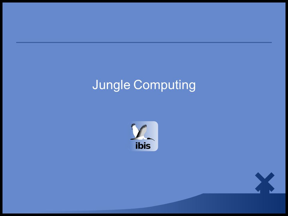 Jungle Computing