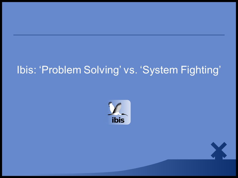 Ibis: 'Problem Solving' vs. 'System Fighting'