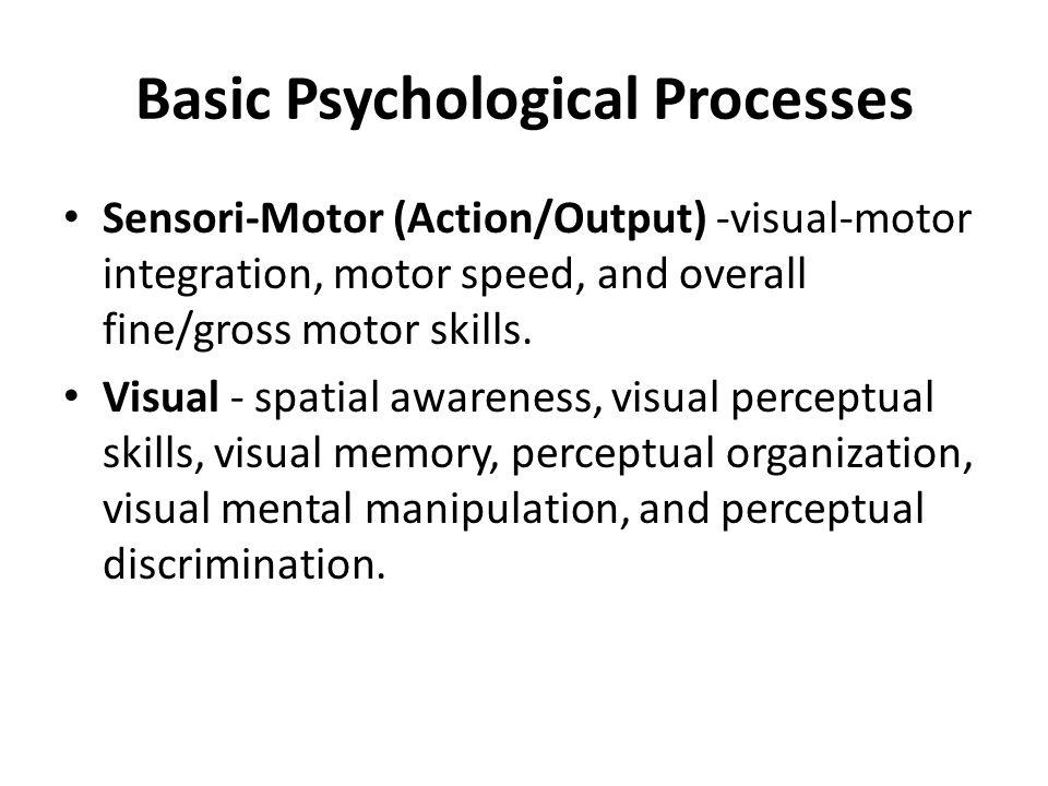 Basic Psychological Processes Sensori-Motor (Action/Output) -visual-motor integration, motor speed, and overall fine/gross motor skills.