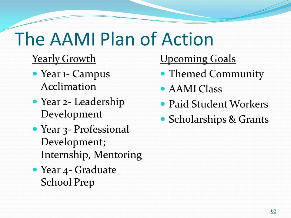 The AAMI Plan of Action Yearly Growth Year 1- Campus Acclimation Year 2- Leadership Development Year 3- Professional Development; Internship, Mentorin
