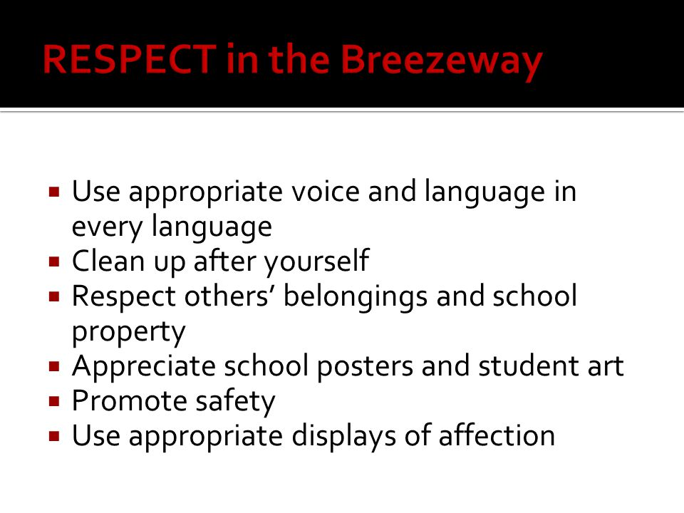  Use appropriate voice and language in every language  Clean up after yourself  Respect others' belongings and school property  Appreciate school posters and student art  Promote safety  Use appropriate displays of affection