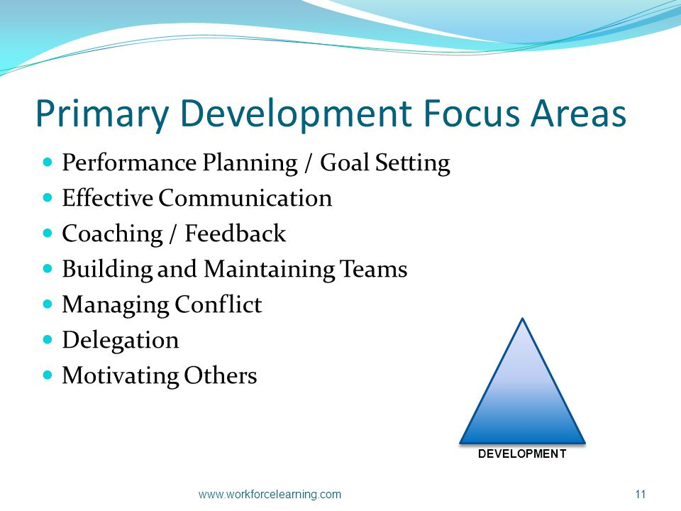 Primary Development Focus Areas Performance Planning / Goal Setting Effective Communication Coaching / Feedback Building and Maintaining Teams Managin