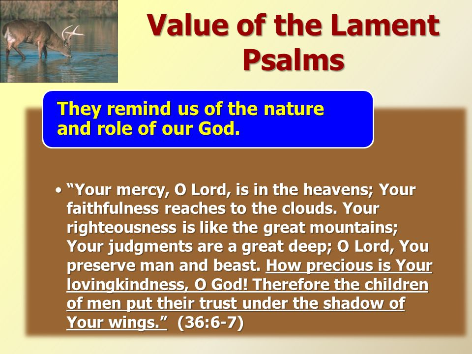 "Value of the Lament Psalms ""Your mercy, O Lord, is in the heavens; Your faithfulness reaches to the clouds. Your righteousness is like the great mount"