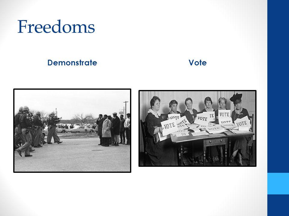 Freedoms DemonstrateVote