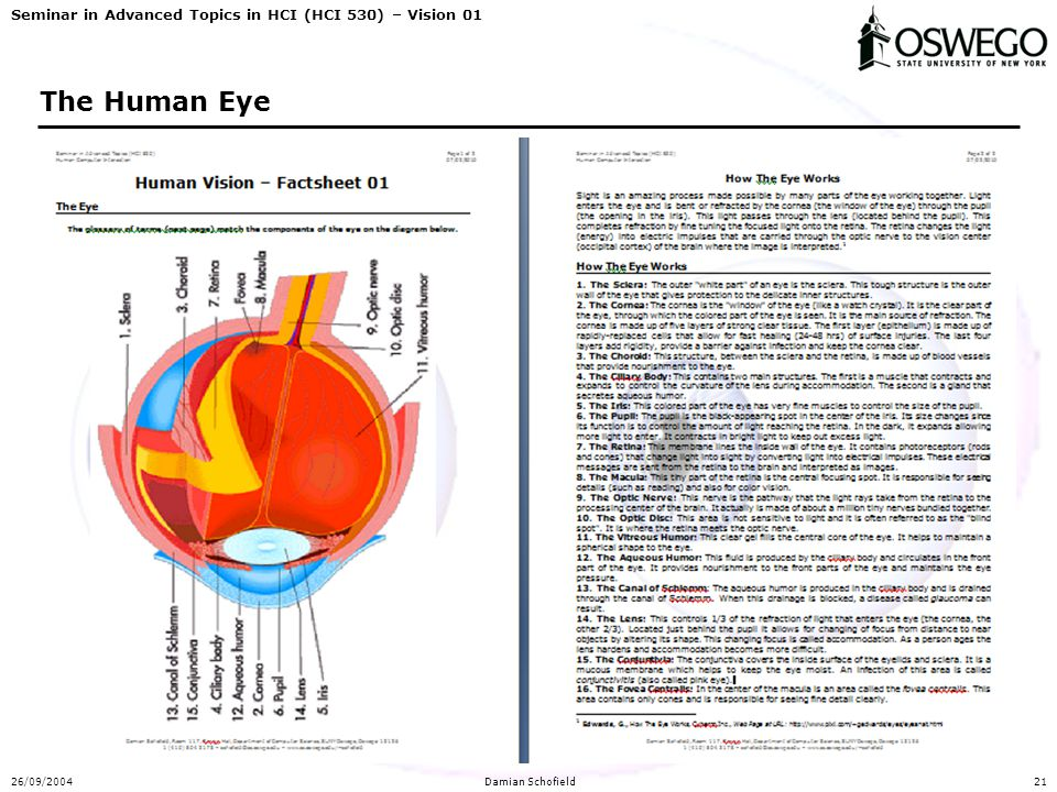 Seminar in Advanced Topics in HCI (HCI 530) – Vision 01 26/09/2004Damian Schofield21 The Human Eye