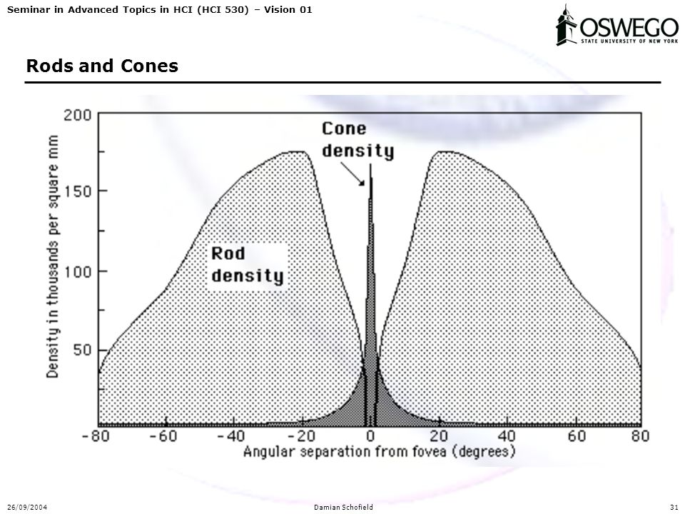 Seminar in Advanced Topics in HCI (HCI 530) – Vision 01 26/09/2004Damian Schofield31 Rods and Cones