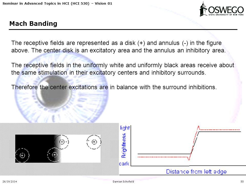 Seminar in Advanced Topics in HCI (HCI 530) – Vision 01 26/09/2004Damian Schofield55 Mach Banding The receptive fields are represented as a disk (+) and annulus (-) in the figure above.