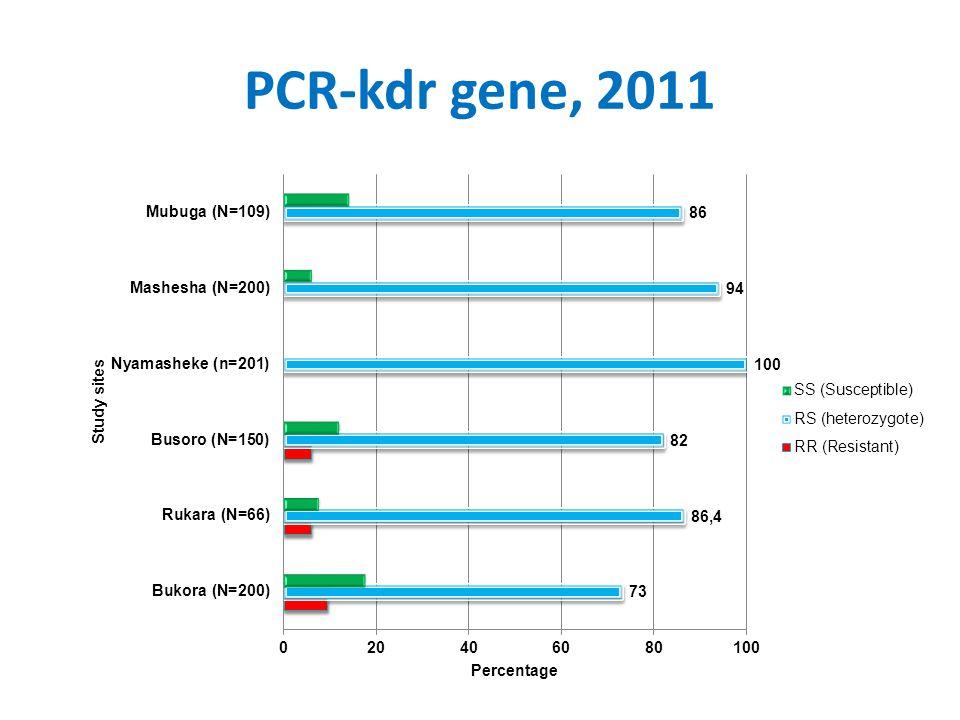 PCR-kdr gene, 2011