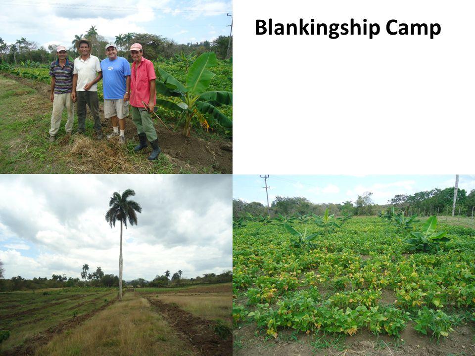 Blankingship Camp