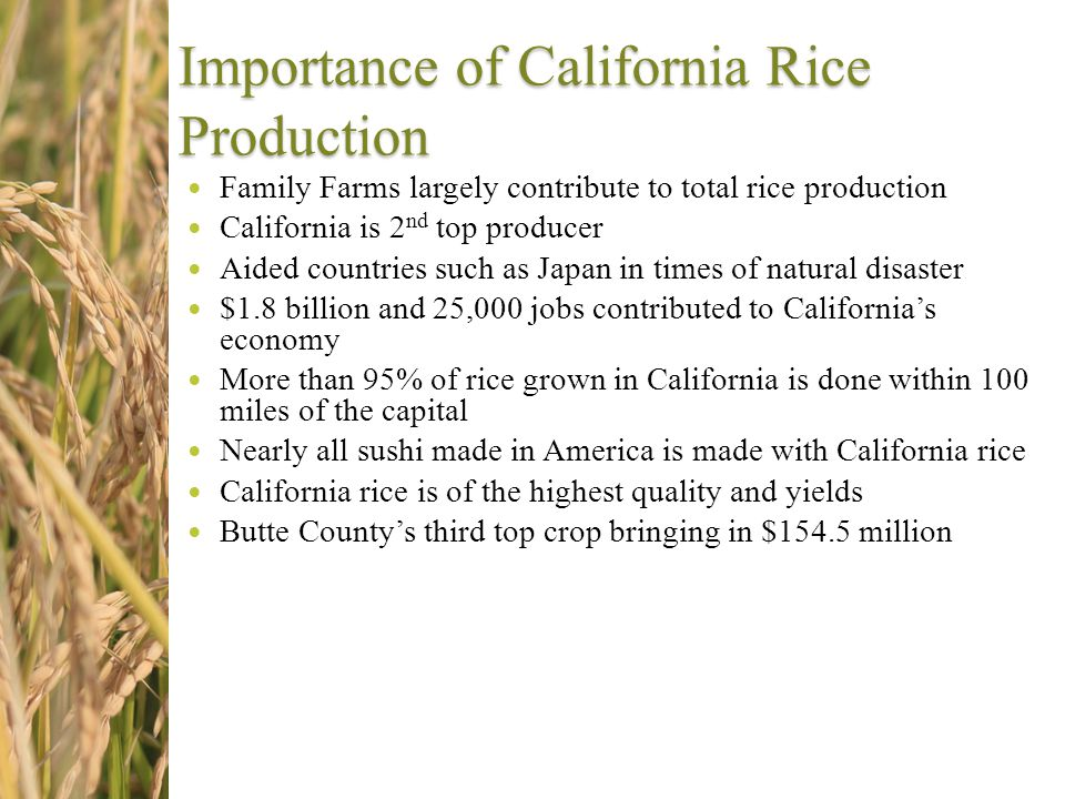 Importance of California Rice Production Family Farms largely contribute to total rice production California is 2 nd top producer Aided countries such