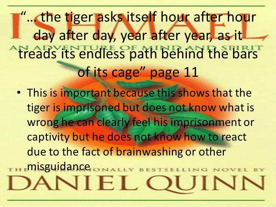… the tiger asks itself hour after hour day after day, year after year, as it treads its endless path behind the bars of its cage page 11 This is important because this shows that the tiger is imprisoned but does not know what is wrong he can clearly feel his imprisonment or captivity but he does not know how to react due to the fact of brainwashing or other misguidance
