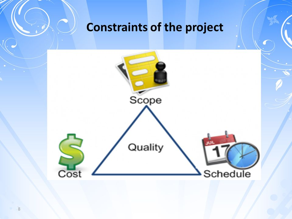 8 Constraints of the project
