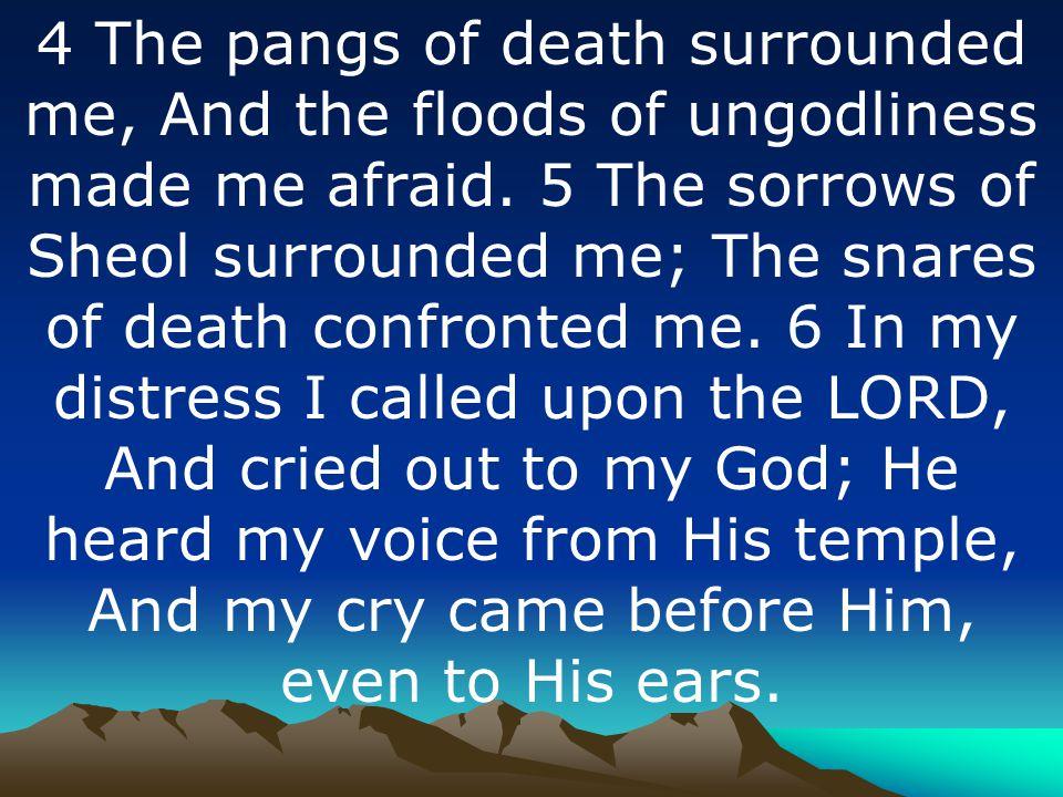 DAVID S DECLARATION
