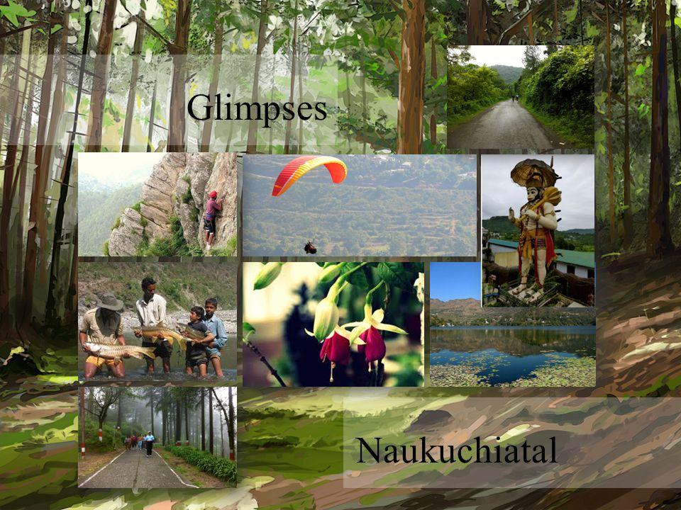 Glimpses Naukuchiatal