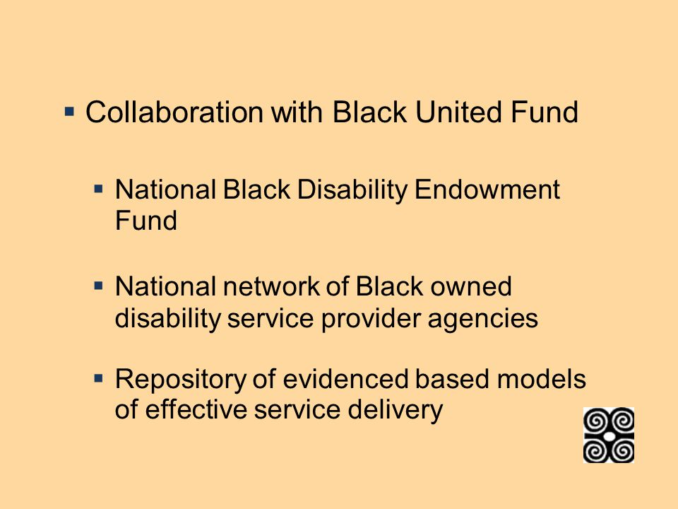  Collaboration with Black United Fund  National Black Disability Endowment Fund  National network of Black owned disability service provider agencies  Repository of evidenced based models of effective service delivery