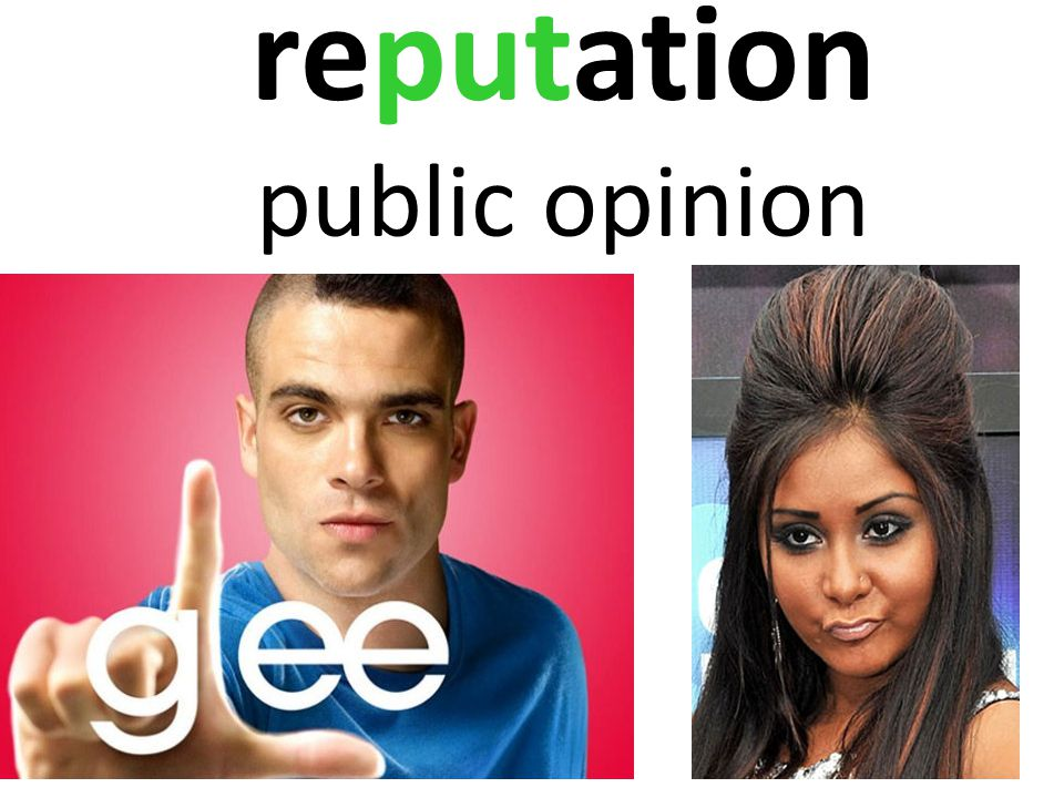 reputation public opinion