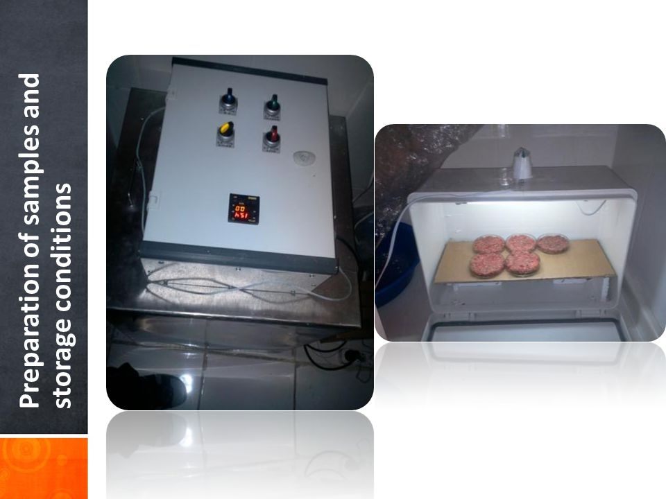 Preparation of samples and storage conditions