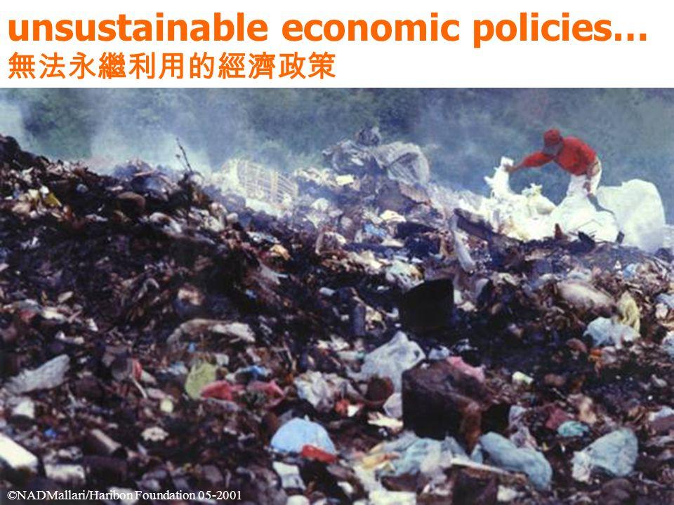 unsustainable economic policies… 無法永繼利用的經濟政策 ©NADMallari/Haribon Foundation 05-2001