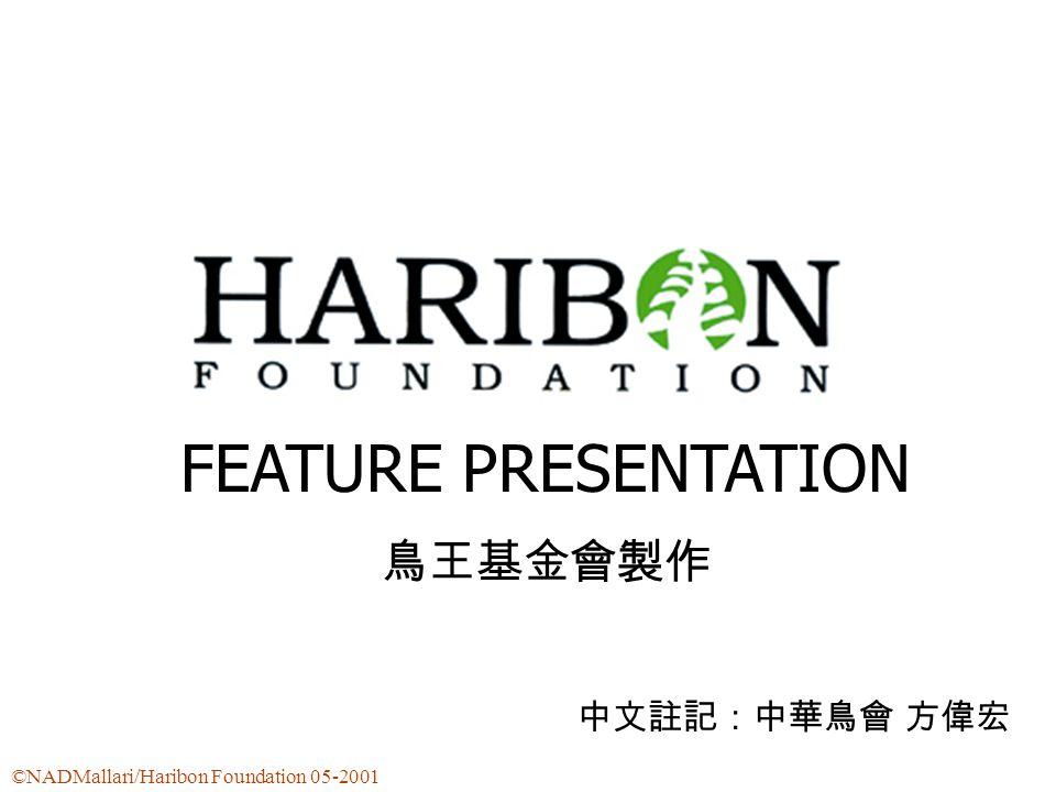 FEATURE PRESENTATION 鳥王基金會製作 中文註記:中華鳥會 方偉宏