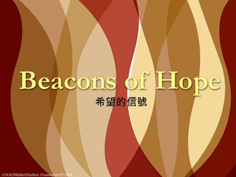 that there are 117 seeds of hope 因此就有 117 個希望的種子 ©NADMallari/Haribon Foundation 05-2001