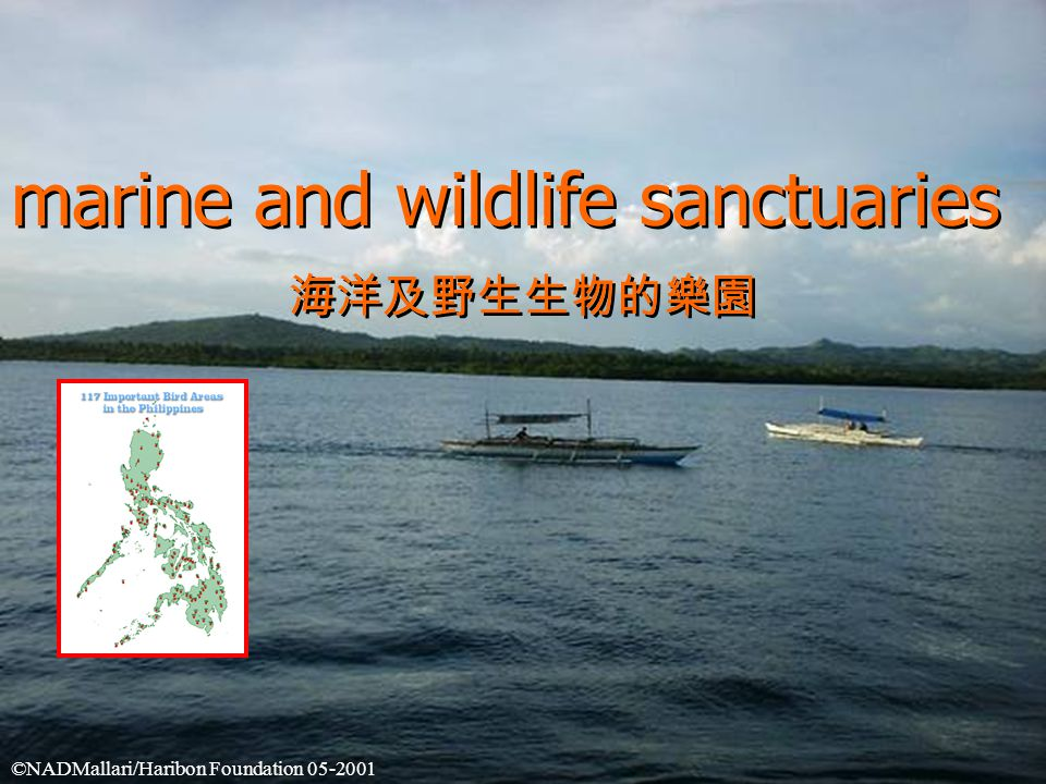 marine and wildlife sanctuaries 海洋及野生生物的樂園 marine and wildlife sanctuaries 海洋及野生生物的樂園 ©NADMallari/Haribon Foundation 05-2001