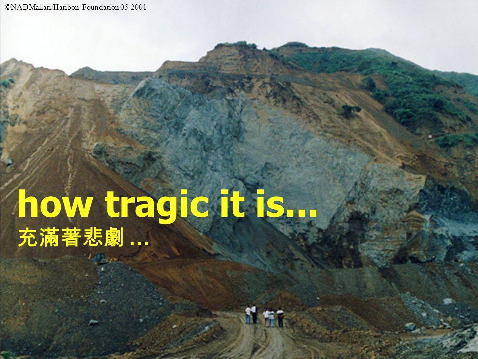 how tragic it is... 充滿著悲劇 … ©NADMallari/Haribon Foundation 05-2001