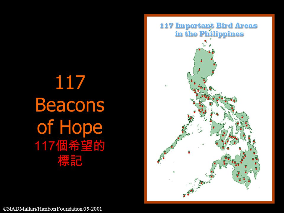 117 Beacons of Hope 117 個希望的 標記 ©NADMallari/Haribon Foundation 05-2001