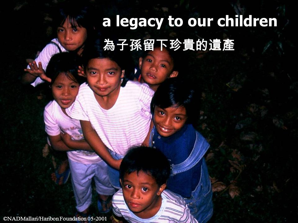 a legacy to our children 為子孫留下珍貴的遺產 ©NADMallari/Haribon Foundation 05-2001